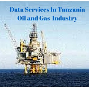 Data Services In Tanzania Oil and Gas Industry