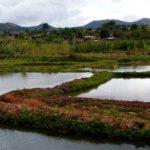 The Ruvuma region is ripe for gas development. (Image Credit: Egbert in donker Afrika/Flickr)